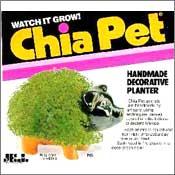 Chia Pig